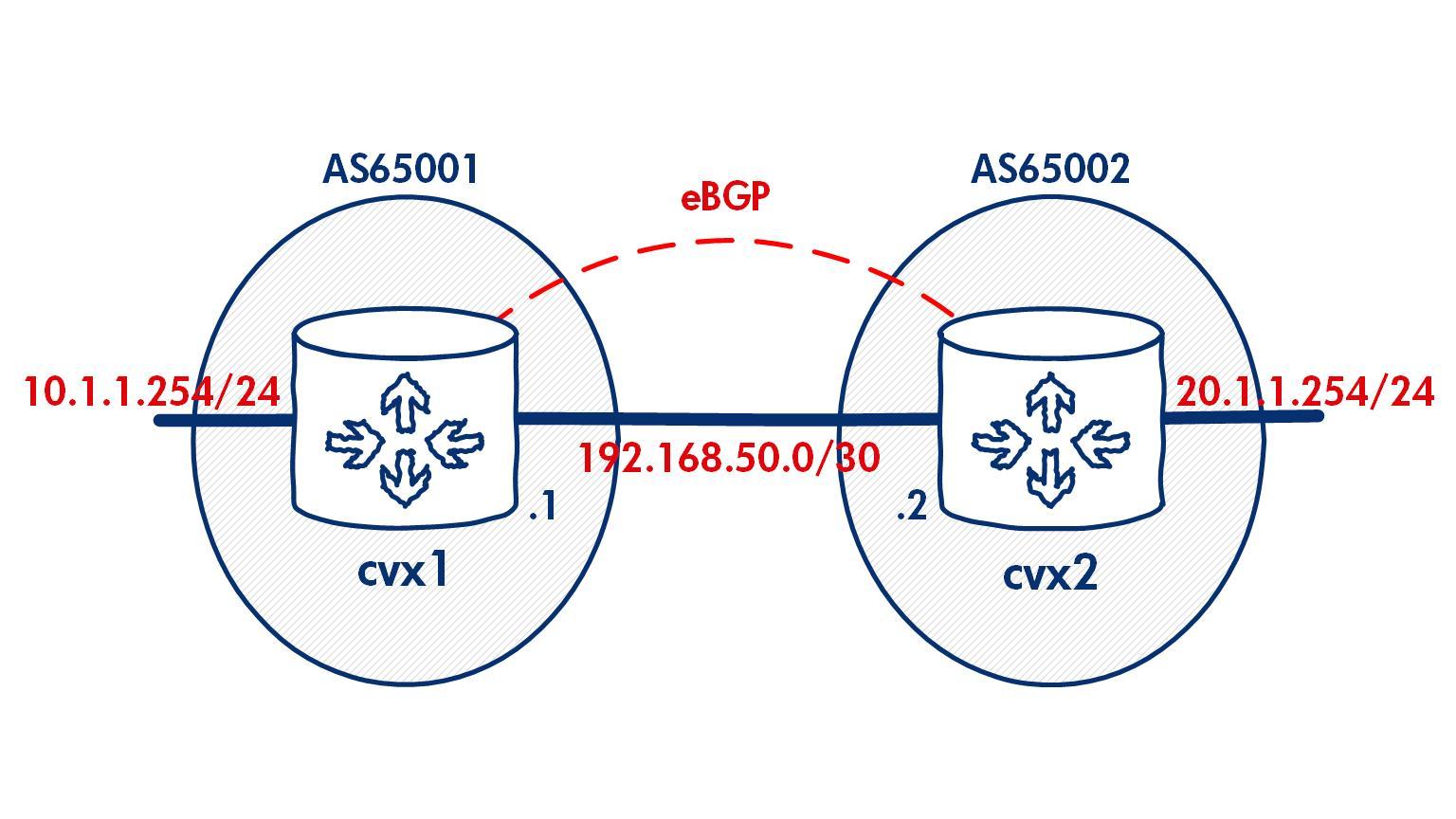 ebgp_network