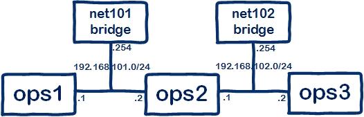 net101-2